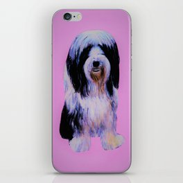 Bearded collie on pink iPhone Skin