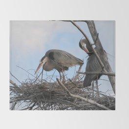Great Blue Herons Nesting Throw Blanket