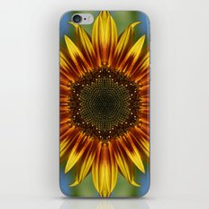 Sunflower Kaleidoscope iPhone & iPod Skin
