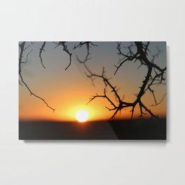 ball of fire Metal Print