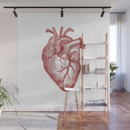Vintage Heart Anatomy Wall Mural