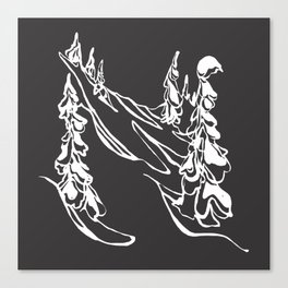 Ghost Trees : I Canvas Print