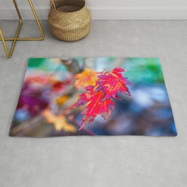 Colorful Japanese Maple Tree Leaves In Autumn Rug
