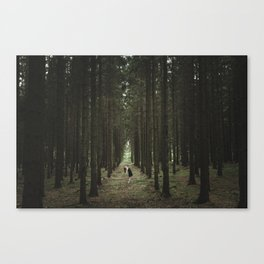 The Woods of St Olof 2 Canvas Print