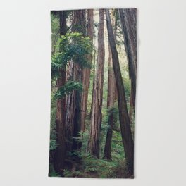 The Redwoods at Muir Woods Beach Towel