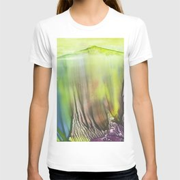 Waterfall of colors - abstract landscape watercolor monotype T-shirt