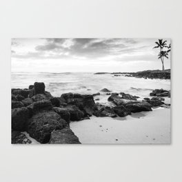 Dramatic coastline at Poipu beach in Kauai, Hawaii Canvas Print