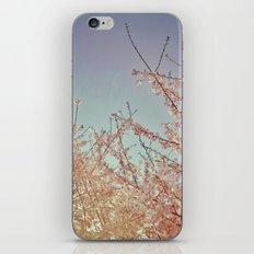 Spring Awakening iPhone Skin