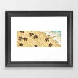 Turtles! Framed Art Print