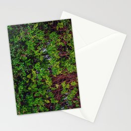 Beautiful Boundaries Stationery Cards