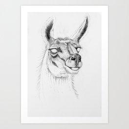 Llama Ink Art Print