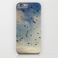 Harvest birds iPhone 6s Slim Case