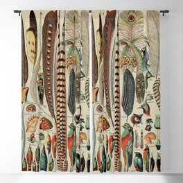 Feathers (Plumes) Vintage French Poster by Adolphe Millot Blackout Curtain