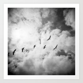 """Bird Silhouettes"" Holga double exposure Art Print"
