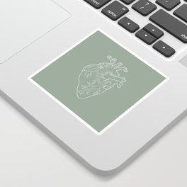 Anatomical Heart Illustration Sticker