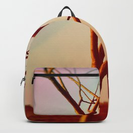 What Good Are Wings Without the Courage To Fly Backpack