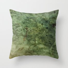 Greenstone grain Throw Pillow