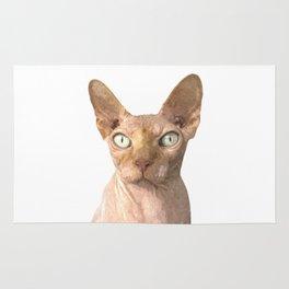 Sphynx cat portrait Rug