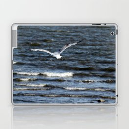 Search Laptop & iPad Skin