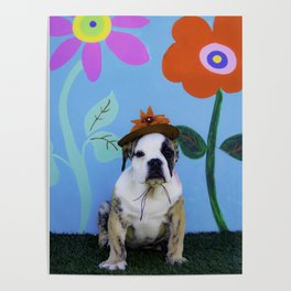 English Bulldog Puppy Wearing a Hat in front of a Spring Background with Tall Flowers Poster