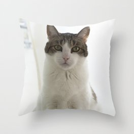 Attentive Cat Throw Pillow