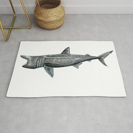 Basking shark (Cetorhinus maximus) Rug