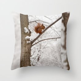 Squirrel sitting on twig in snow Throw Pillow