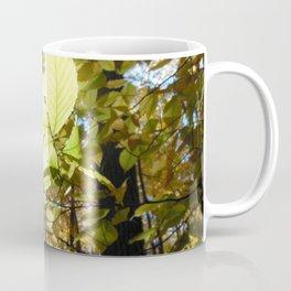 Fagus grandifolia Coffee Mug