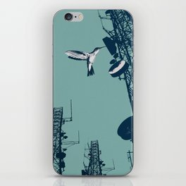 communication bird iPhone Skin