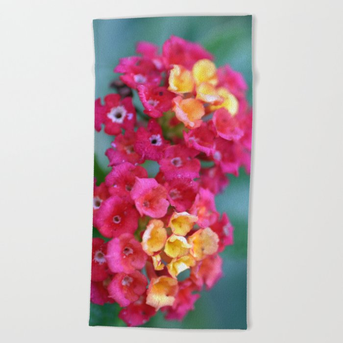 Lantana Beach Towel