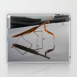 Mantis Laptop & iPad Skin