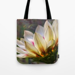 Glowing Gazania Tote Bag