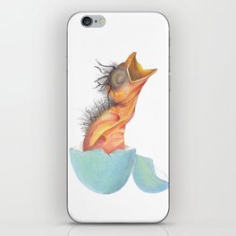 hatching robin iPhone Skin