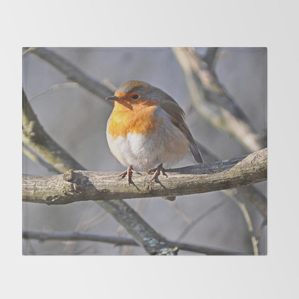 Fluffy Robin Redbreast Throw Blanket (BLK915575) photo