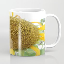 Sun rose Coffee Mug