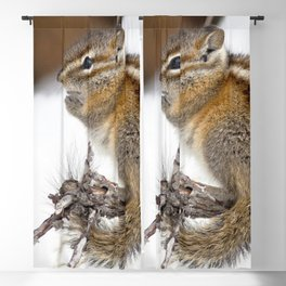 Watercolor Colorado Chipmunk 05, Snack for Me? Blackout Curtain
