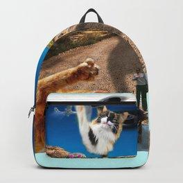 Desert Kitties Backpack