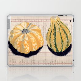 Gourds in Gouache Laptop & iPad Skin