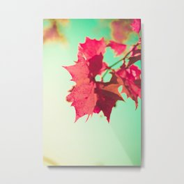 Red Maple Leafs Metal Print