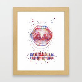 Tooth chart, mouth anatomy, human mouth, medical art Framed Art Print