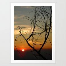 Sunset Sticks Art Print