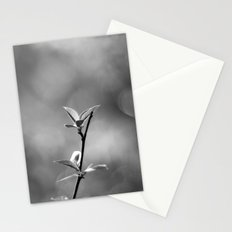 Spring Begins in Black and White Stationery Cards