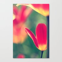 tulips Canvas Prints featuring tulips by Falko Follert Art-FF77