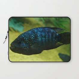 Jack Dempesy Cichlid Laptop Sleeve
