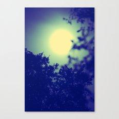 Moonshine  Canvas Print