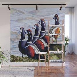 Harlequinn Ducks of LBI Wall Mural
