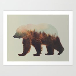 Norwegian Woods: The Brown Bear Art Print