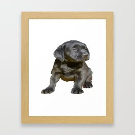 Adorable and Cute Black Labrador Puppy Vector Framed Art Print