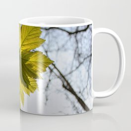Reach For The Light Coffee Mug