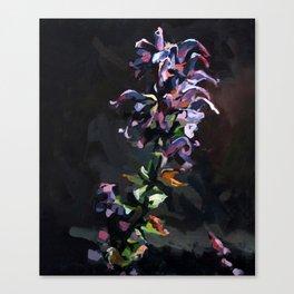 Noche Violeta Canvas Print